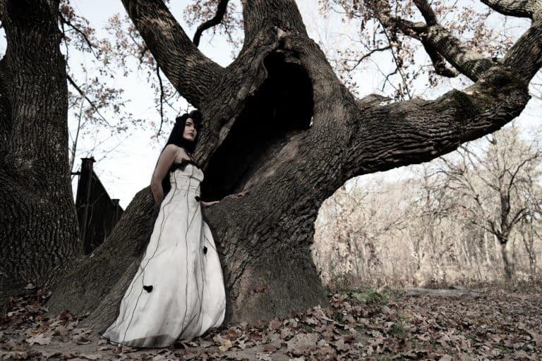 Une jeune mariée qui fait une séance photo devant un arbre sans feuille pour un theme mariage automne.